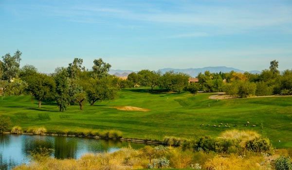 Coyote Lakes increases revenue by 16% with Sagacity Golf