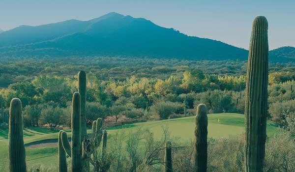 Rancho Mañana Golf Club increases revenue by 28% with Sagacity Golf